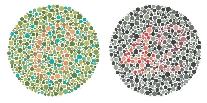 Renk Korlugu Valor Optik